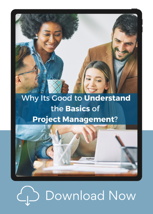 What is Project Management guide